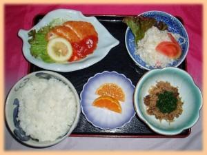 kenkosyoku03